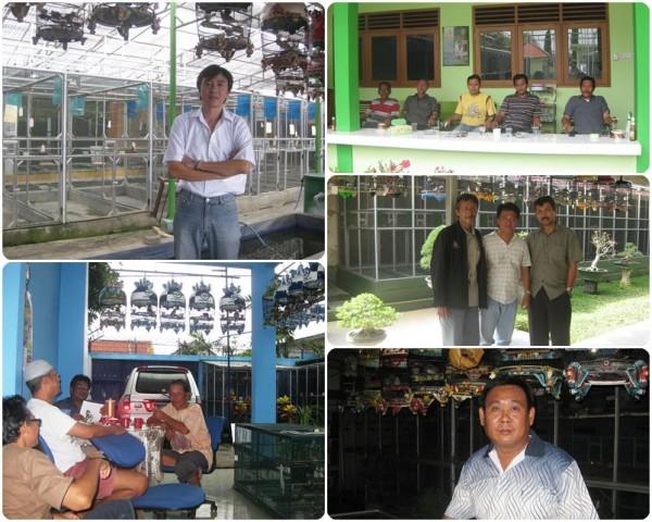 kunjungan birdfarm surabaya