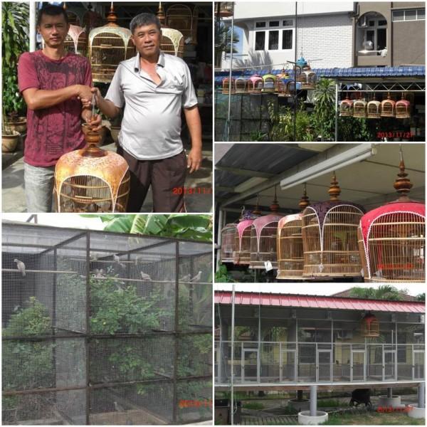 ET Birdfarm Alorstar Kedah Malaysia