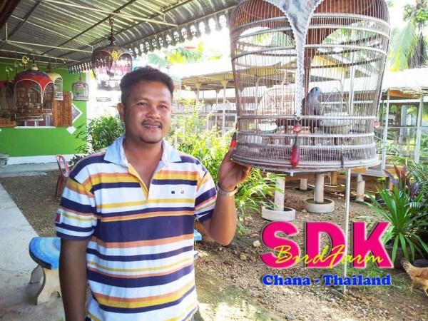 sdk birdfarm chana