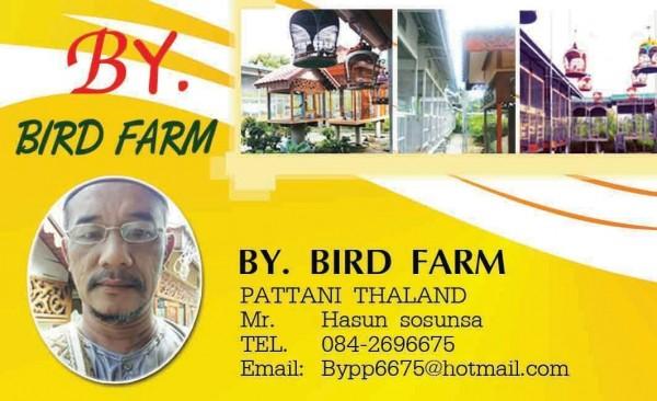 BY bird farm perkutut pattani